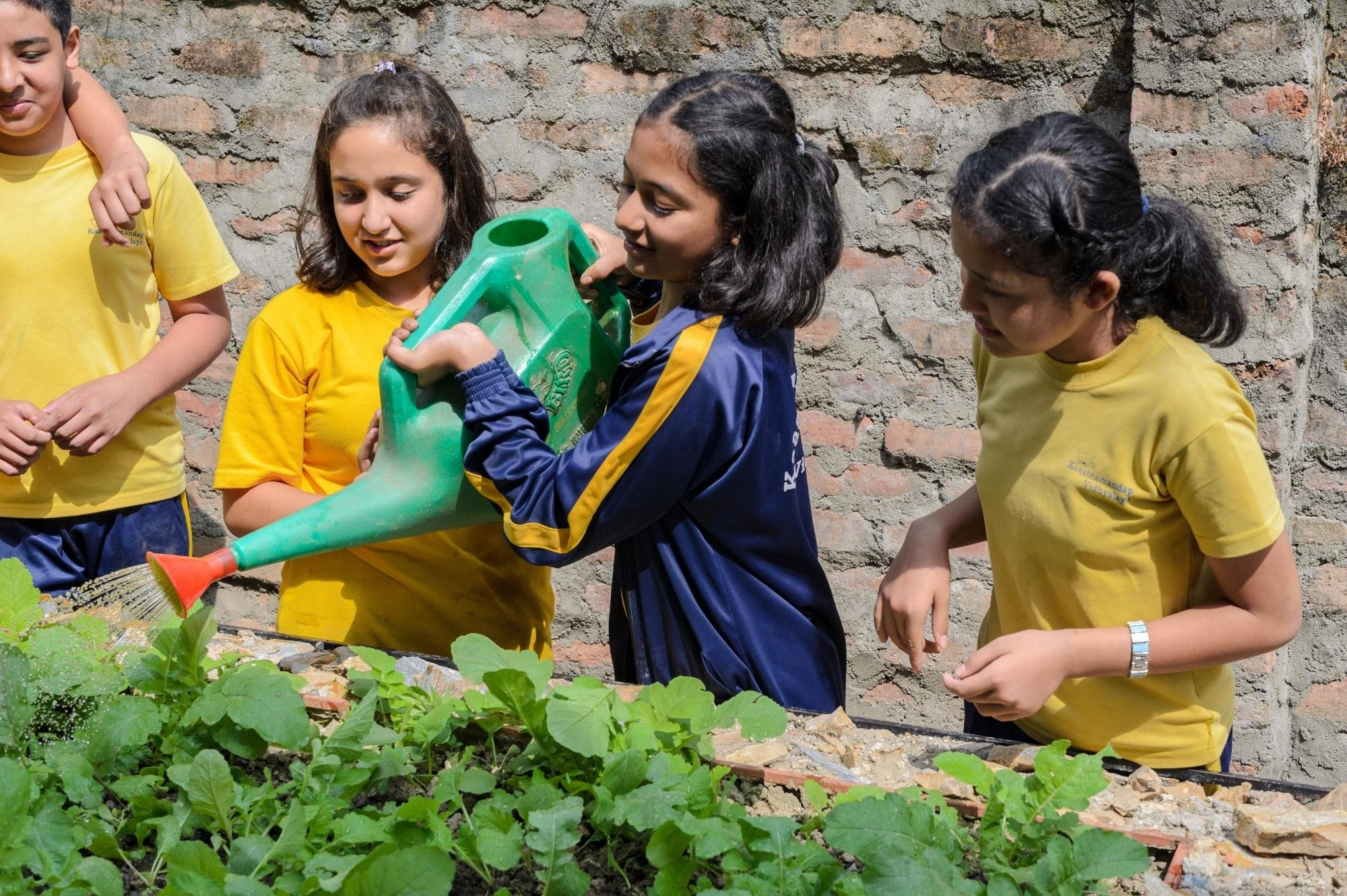 Our Green School - Hamro Harit Vidhyalaya