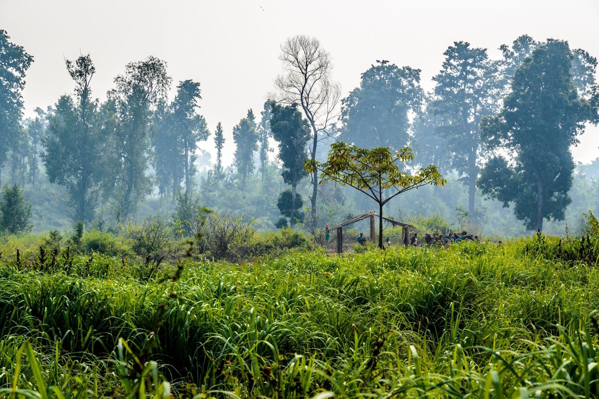 2. Habitat Management and Restoration