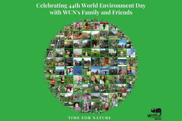 Celebrating World Environment Day 2020