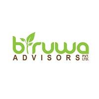 Biruwa Advisors